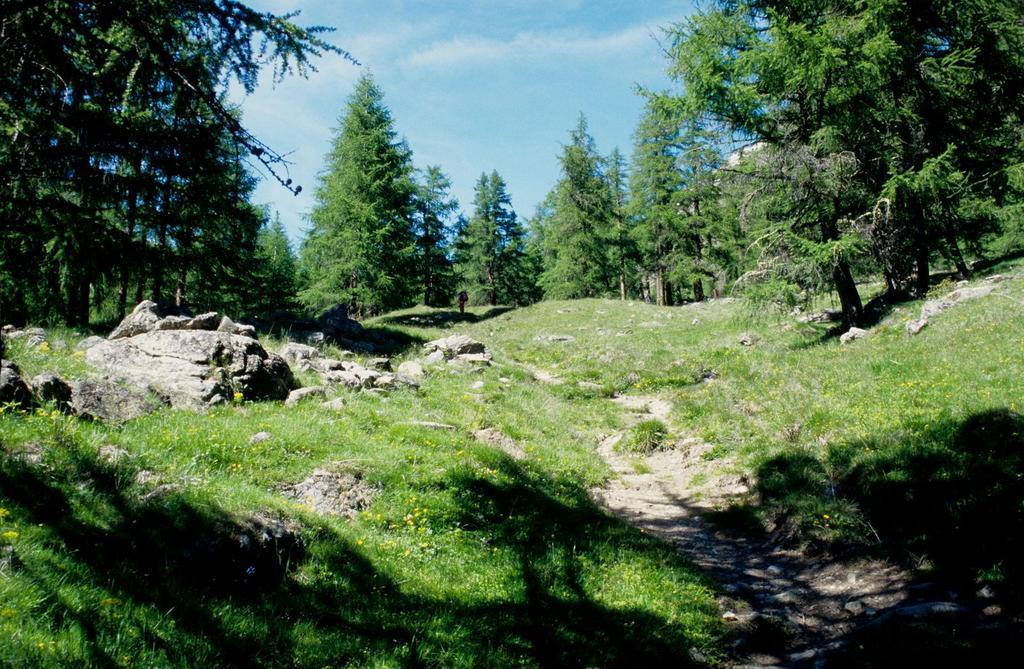 il tratto iniziale del Vallone di Tisa (20-6-1998)