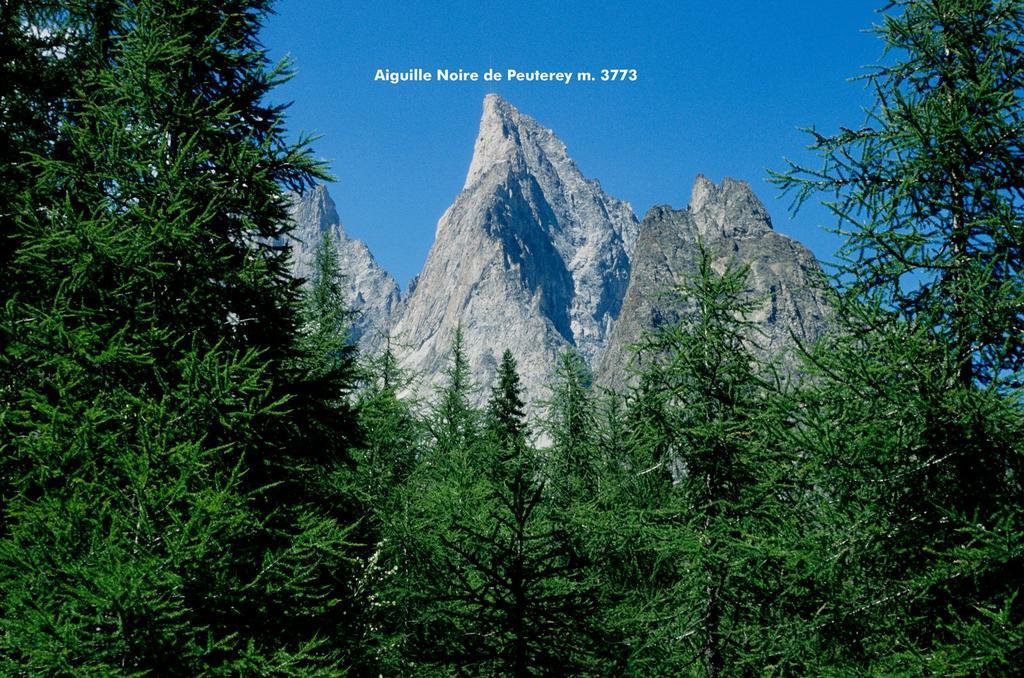 dal bosco spunta la splendida Aiguille Noire de Peuterey (25-7-1998)