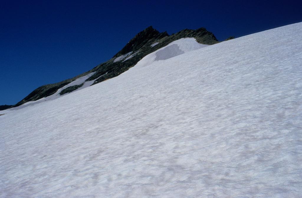 la Punta Lechaud vista dal Ghiacciaio di Chavannes (26-7-1998)