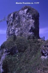 il Monte Procinto osservato dal Rifugio Forte dei Marmi (2-5-1999)