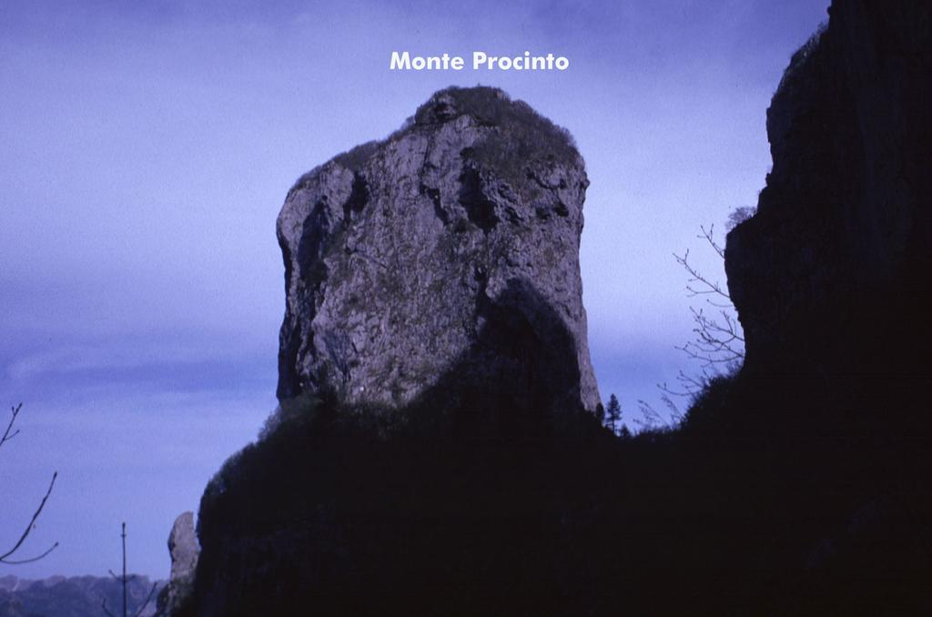 un'altra bella visuale sul Procinto, dal sentiero Aristide Bruni (2-5-1999)