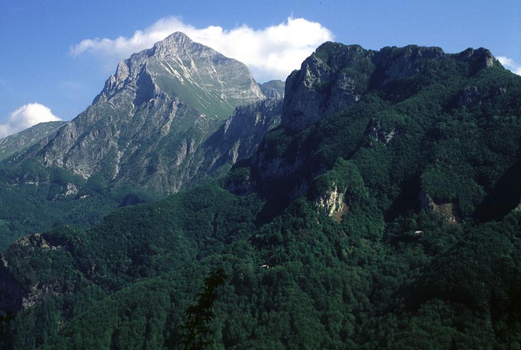 panorami dalla cima : Pania della Croce (15-5-2000)