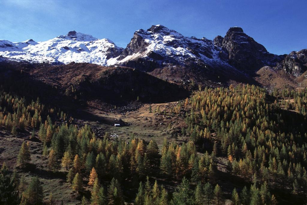il bel Vallone di Cuneaz che si segue in salita (8-10-2000)
