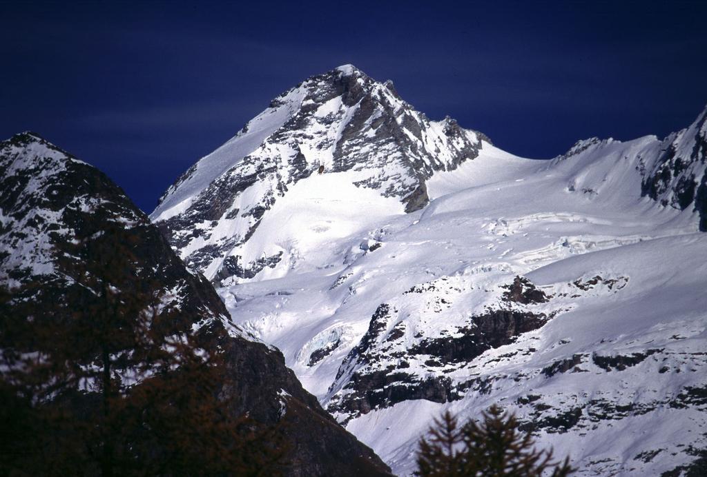 panorami dalla cima : Dent d'Herens (29-10-2000)