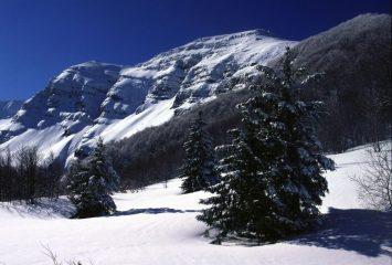 il Monte Giovo visto dal Passo della Boccaia (11-2-2001)