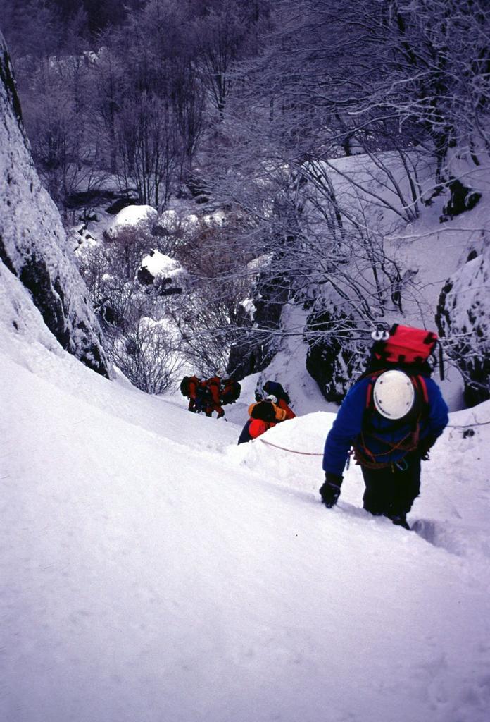 Maggiorasca (Monte) da Rocca d'Aveto per il Canalone Martincano e il versante Sud-Ovest 2002-02-17