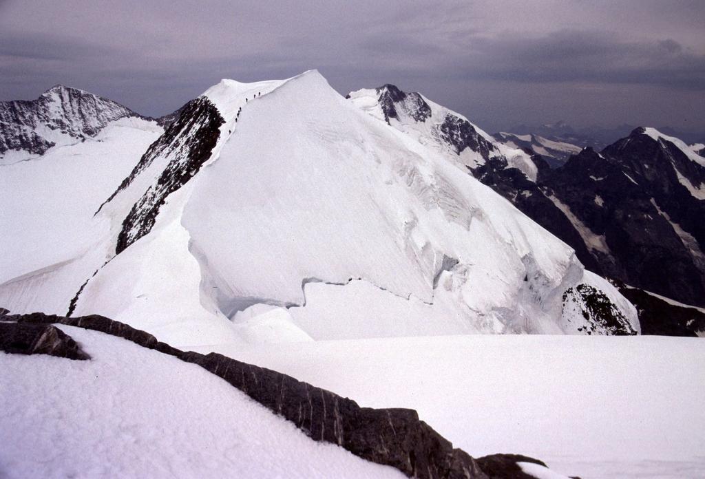 panorami dalla cima : il Pizzo Palù Centrale e dietro spunta il Bernina (22-7-2002)