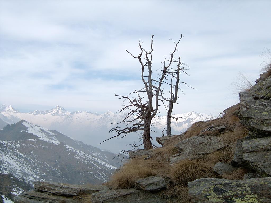 Panorama dai pressi della vetta
