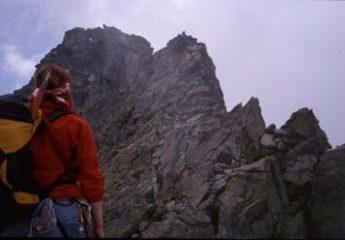 Rosi con la cresta sullo sfondo