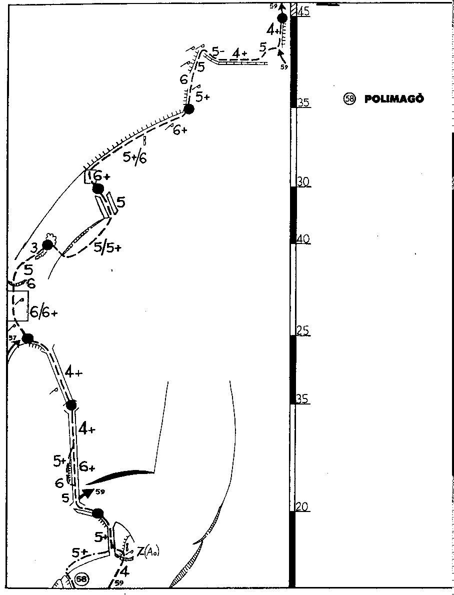 Metamorfosi (Scoglio della) Polimagò 2003-06-15