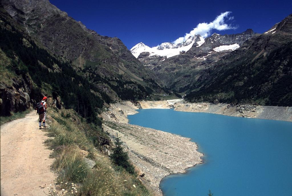il Lago di Place Moulin e la Dent d'Herens sullo sfondo (5-7-2003)