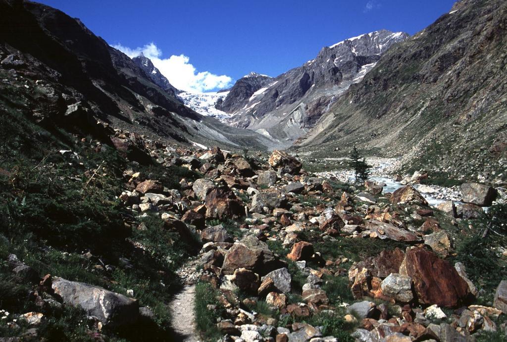la morena della parte alta del vallone di salita al Rifugio Aosta (5-7-2003)