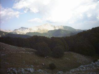 Dalla cresta di Rocca Altiera,panorama sul M.Forcellone.