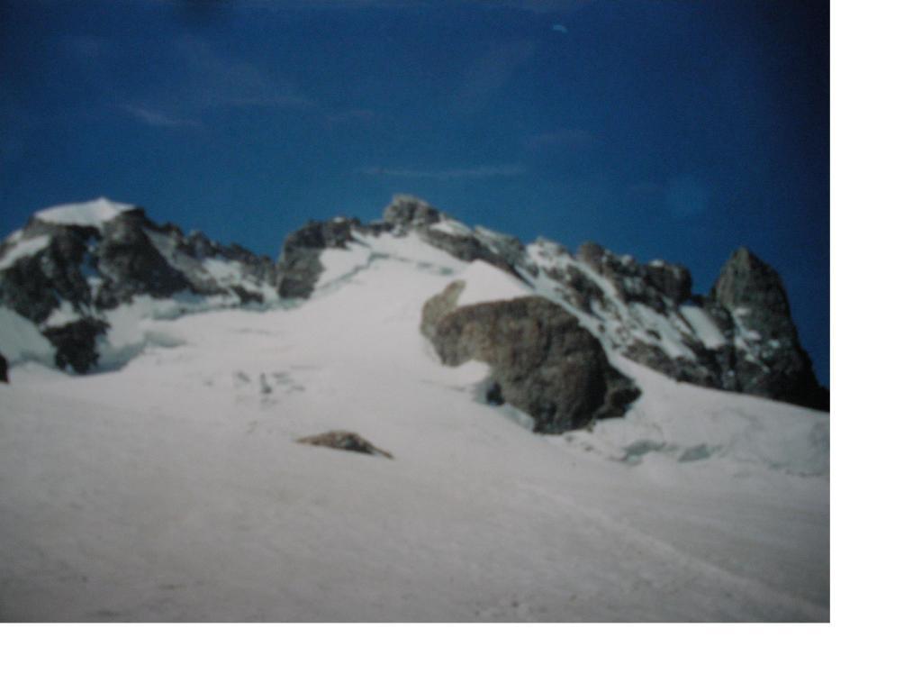 Da sx a dx la Meije orientale, centrale(Doigt de Dieu) e Gran Pic occidentale dal ghiacciaio di Tabuchet