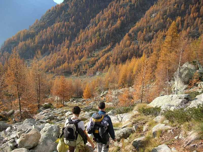 colori d'autunno in discesa dalla Punta Tre Vescovi