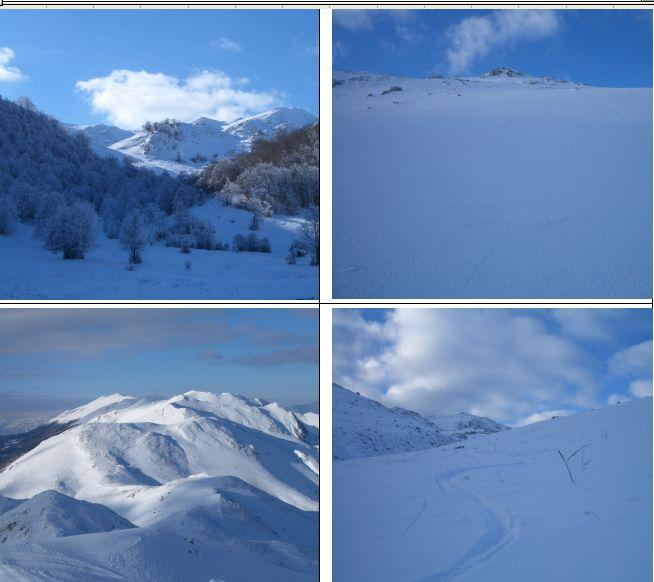in senso orario: 1)Radura del Viperaio 2)Pendio sommitale 3)Discesa (visibile in alto la vetta) 4)Panorama del gruppo della Terratta.