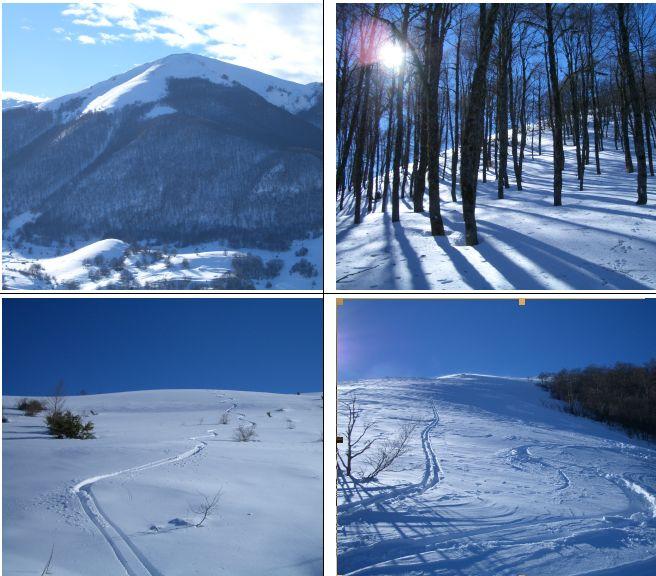In senso orario:1)Panorama a distanza del costolone Est 2)faggeta secolare 3)neve polverosa sul costolone Est 4)neve polverosa nei pendii inferiori