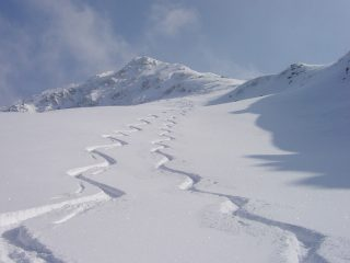 questa è la neve che oggi ci ha fatto compagnia..........
