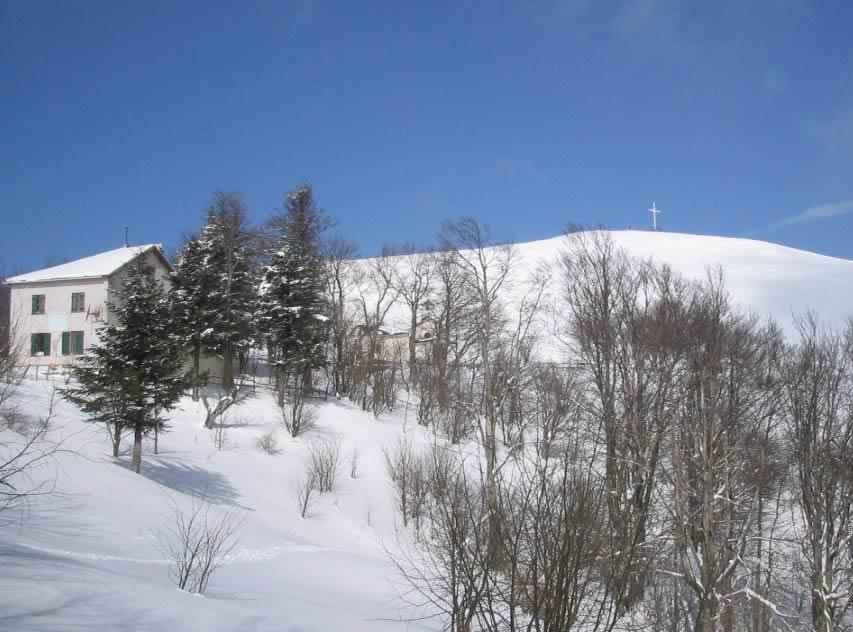 Antola (Monte) da Bavastrelli 2005-02-27