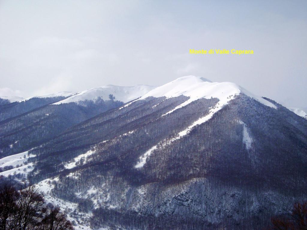Valle Caprara (Monte di) per Costa Caprara 2010-02-17
