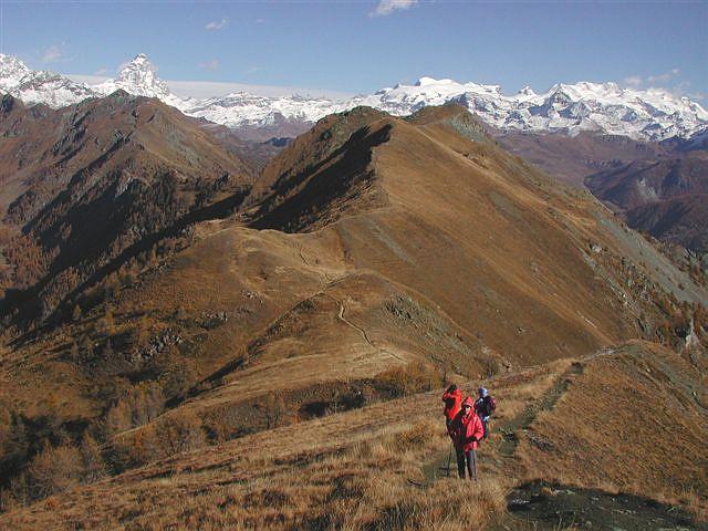 Dalla Cima Longhede, l'ampio dosso che la collega all'Aver, Cervino e Monte Rosa