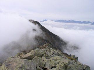 Dalla cima della Bisalta verso le Alpi Marittime