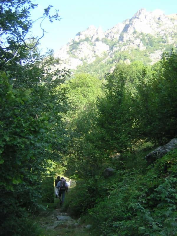scorci della valle dell'elvo e sullo sfondo le formazioni rocciose dove è stato scoperto lo skurz