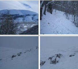 In alto:panorama del Rotella e sentiero nel bosco;In basso il distacco