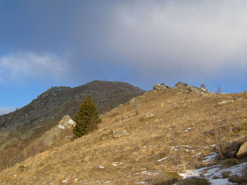 La vetta raggiungendo l'Alpe Colmetta