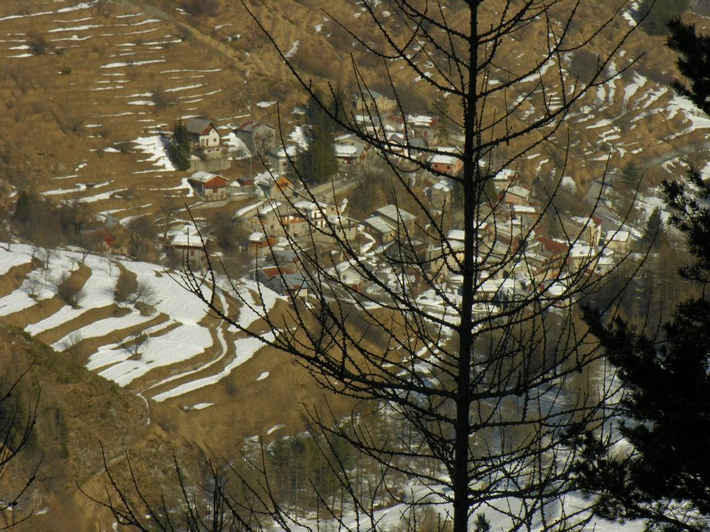 una visuale su Upega dal Bosco delle Navette (12-3-2006)