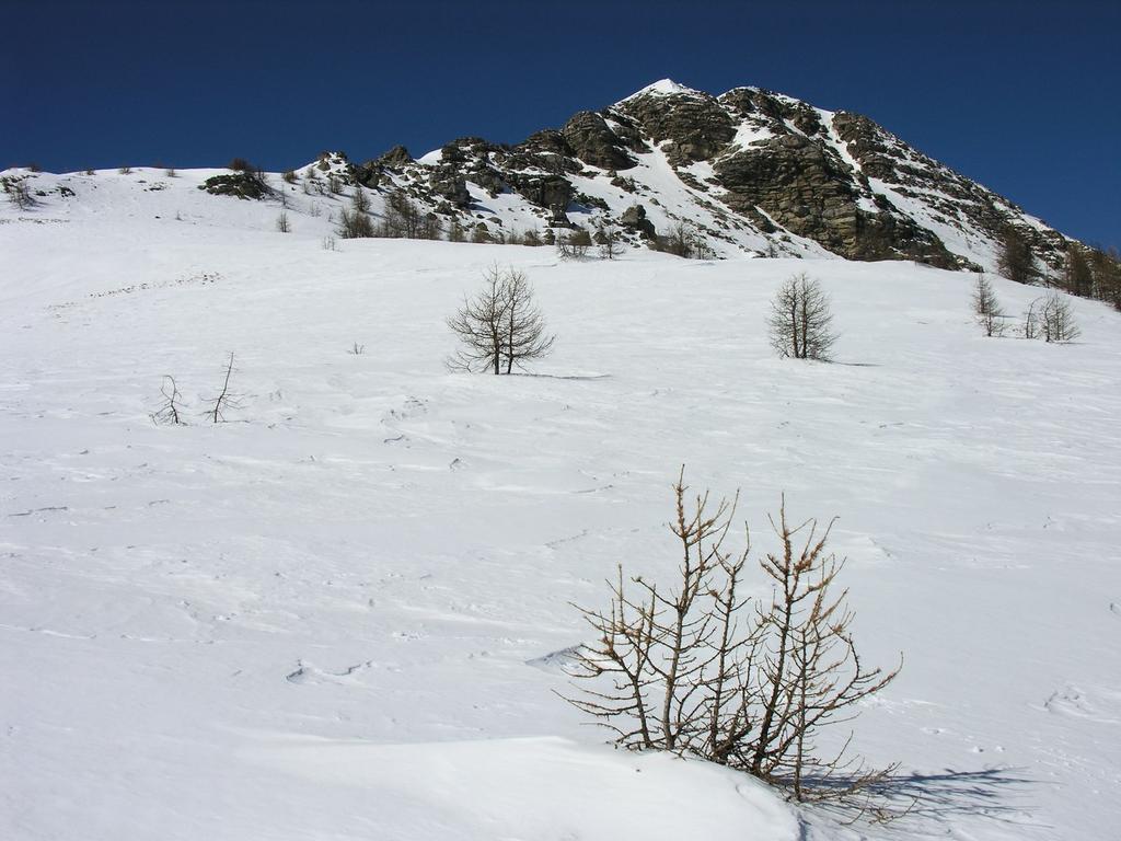 salendo verso la Colla Rossa e il Monte Bertrand (12-3-2006)