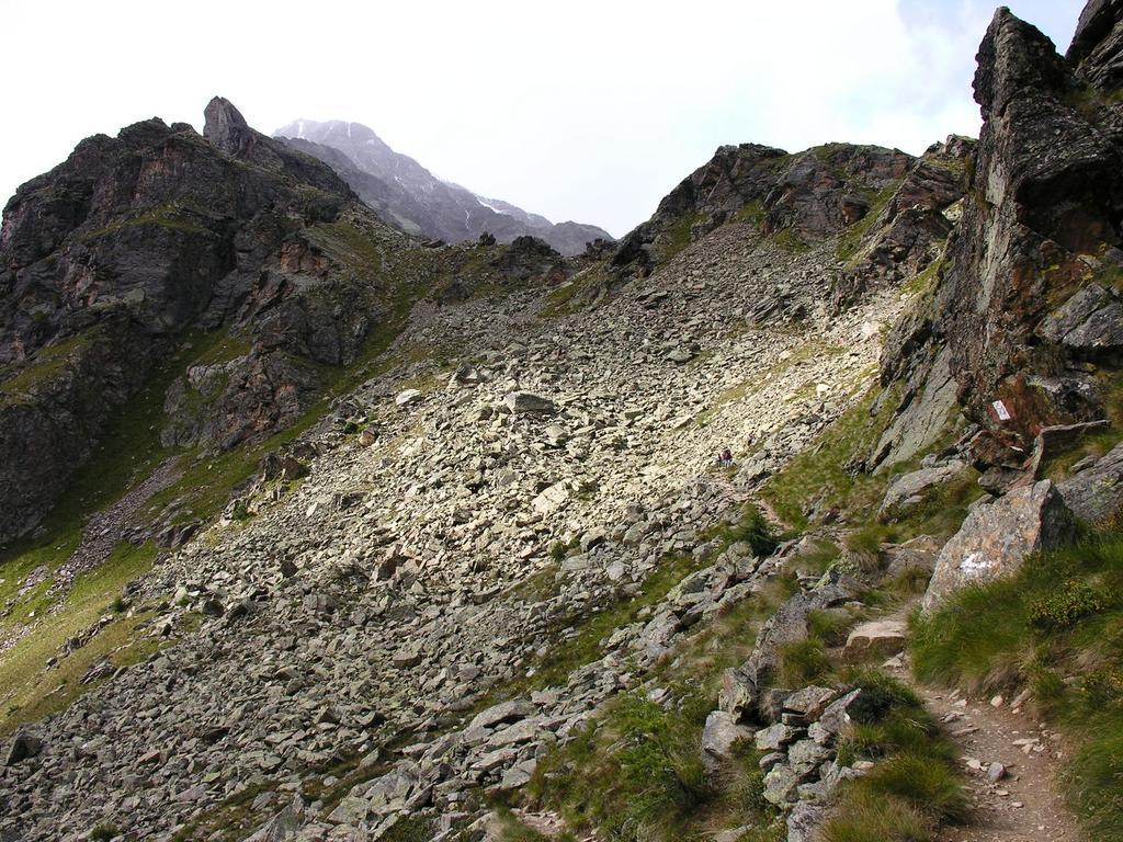 il primo tratto del sentiero che sale verso il Monte Vioz (26-8-2006)