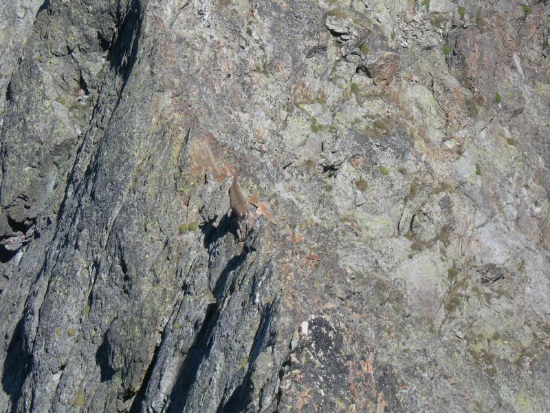 Alpinista 4x4 sul filo di cresta