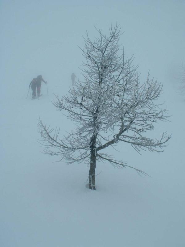 momento di salita nella nebbia