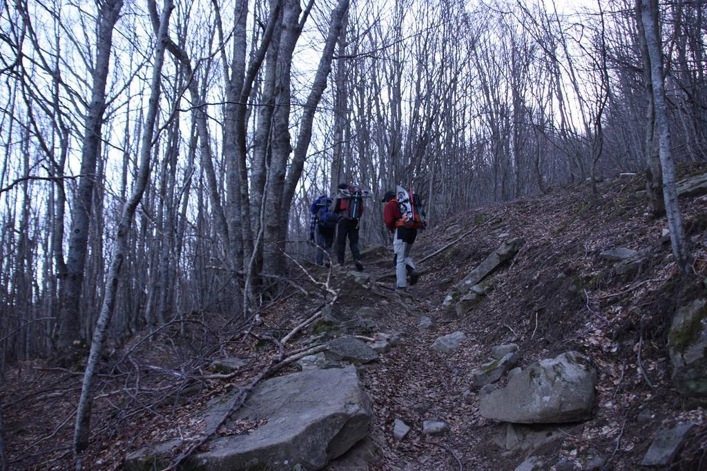 il primo tratto nel bosco è senza neve (4-3-2007)