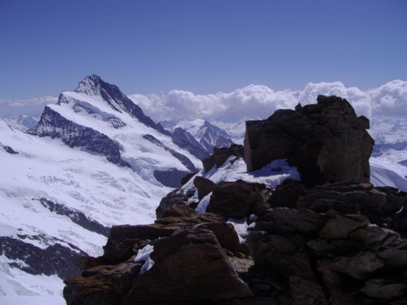 Visto dalla cima dell' Hinter Fiescherhorn