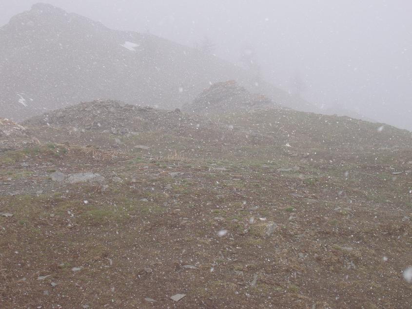 nebbia e neve in cima