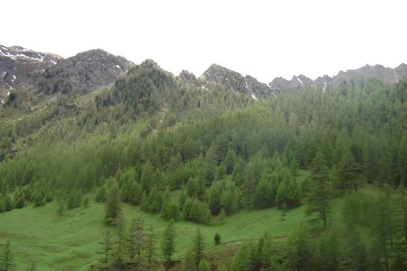 il monte clausis è al centro della foto