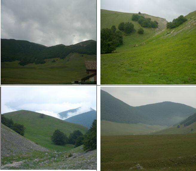 1) i Tre Confini da rif. Heidi 2)Valico q.1866 3)M.Arazzecca nelle nuvole 4)Piano Aremogna