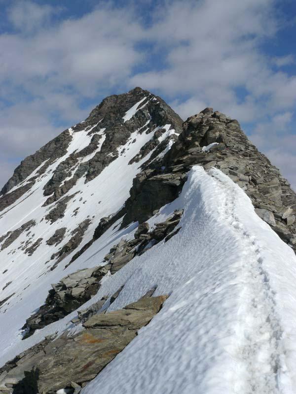 La cresta SE dell'albaron
