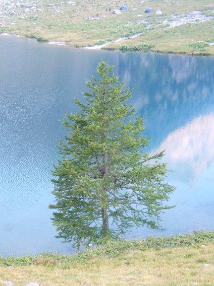 Riflessi al Lago del Laus