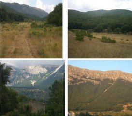 1)in Vallepiana 2)in V.Spera verso il Pizzalto 3)casa diruta in località S.Angelo 4)Vallone Bianco del Porrara