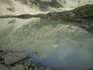 il ciarforon nel lago di ciamosseretto