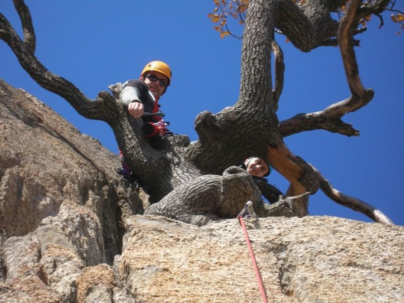 La sota S4 sull' albero