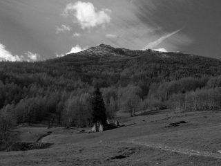 La vetta dall'Alpe Belfè