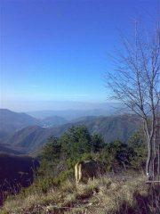 ...sulla cresta tra il Candelozzo e il M.Lago Est
