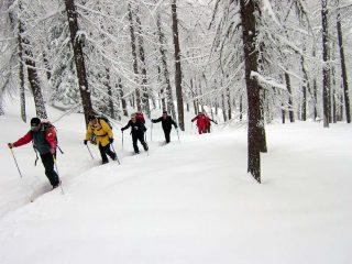 durante la salita su tanta neve fresca