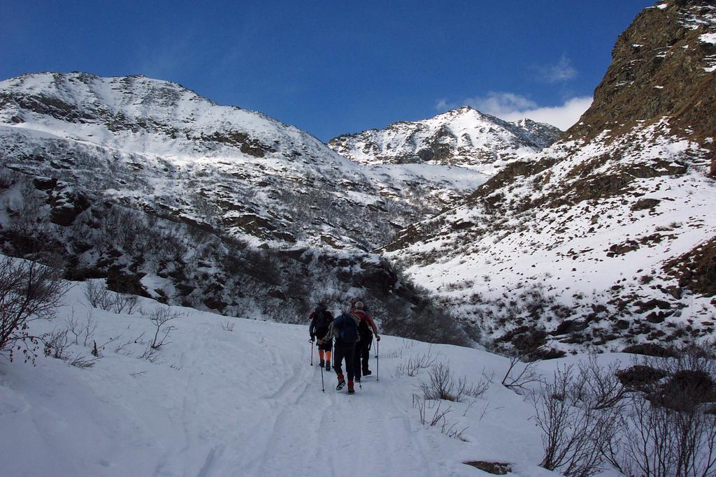 Sella Vecchia (Alpe della) da Prà del Torno 2008-02-02