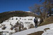 Neve primaverile   I   La neige du printemps   I   Spring snow   I   Frühlingsschnee   I   Nieve primavera