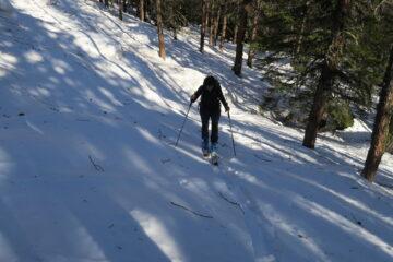 Si sale nel bosco   I   On remonte dans le bois   I   Skinning up in the wood   I   Man steigt im Wald auf   I   Se sube por el bosque